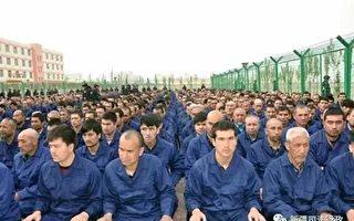 澳洲智库:中共在新疆建380座集中营