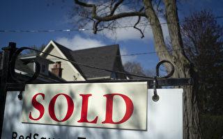 多倫多地產局:密市獨立屋漲破130萬元