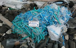台第一本廢棄漁具圖鑑 籲政府管理廢棄漁具