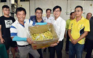 穩定農民收入 高市府宣布補助農業保險20%