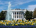 达成纾困协议机会渺茫 白宫欲颁更多行政令