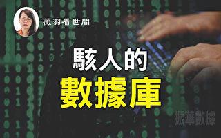 【薇羽看世間】駭人的數據庫
