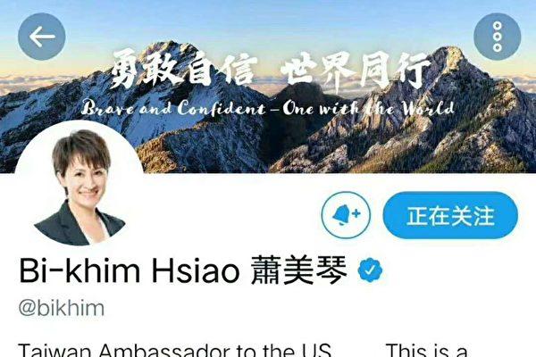 台駐美代表推特簡介變「駐美大使」 網絡熱議