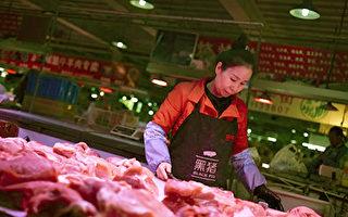朱同:中共統治下的豬肉自由