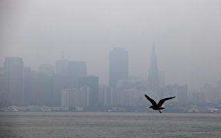 周五野火烟尘将重返湾区