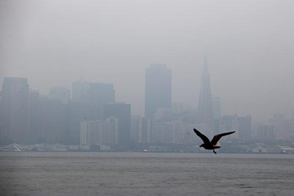 週五野火煙塵將重返灣區
