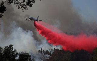 纳帕县野火迅猛 一天内延烧数千英亩