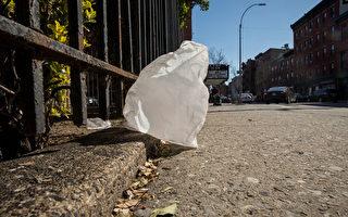 全美首个 新州超市将禁用一次性纸袋与塑料袋