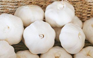 【美食天堂】蒜頭可以冷凍?4方法長久保存新鮮大蒜
