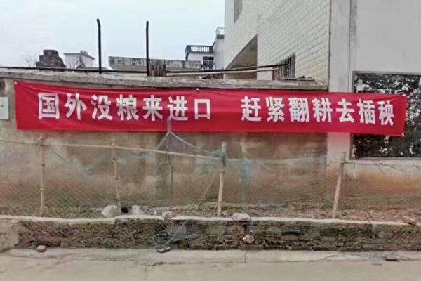 """四川鼓励""""藏粮于民""""民众恐慌纷纷囤粮"""