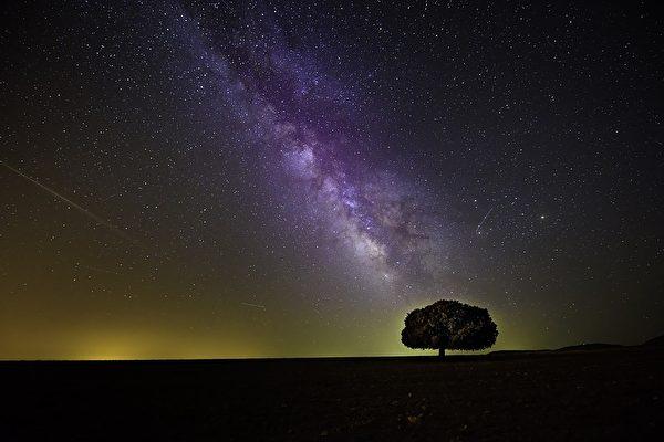 梦想成真 摄影师捕捉银河下狮子饮水的惊人照