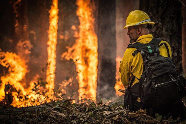 【名家專欄】糟糕的政策助燃了美國森林大火