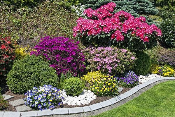 出租房園藝設計與佈置