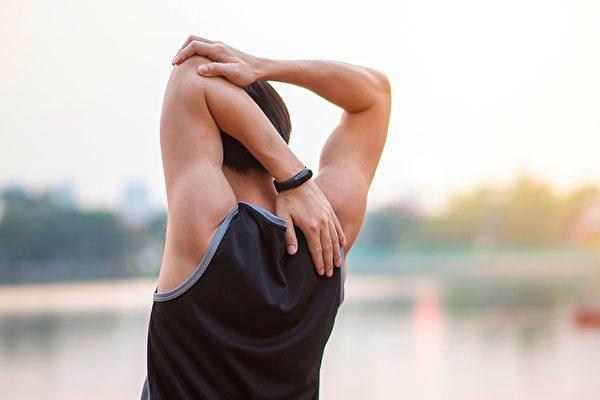 肌肉是脾胃所主管,脾胃好,就会肌肉强健、皮肤饱满、精力充沛。(Shutterstock)