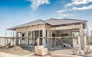 南非年轻女子独力为自己盖房屋 梦想当建商
