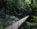 力阻灭绝 全球最大植物保种中心在台湾
