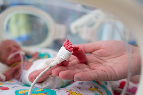 比爸爸手掌小 蘇格蘭463克早產女嬰出院了