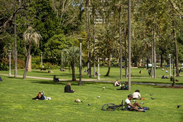 悉尼 绿地
