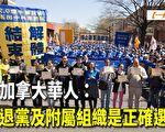 【一线采访视频版】加国华人:三退是正确选择