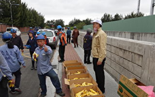 疼惜在地農民 六輕認購一萬公斤香蕉 贈員工