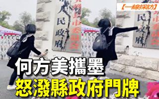 【一线采访视频版】何方美向县政府门牌泼墨