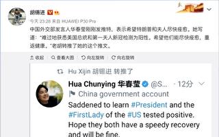 胡锡进微博转发华春莹谈川普的推文 众人狂轰