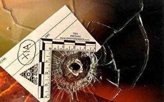 消息人士:黑帮成员用疫情救助金买黑枪
