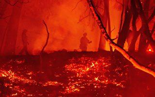 玻璃大火火情更新:烧毁逾6万英亩 火势8%可控