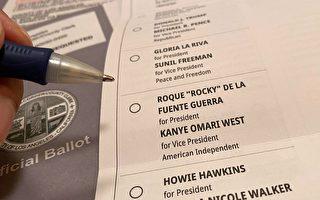 醜聞頻發 監督組織:郵寄選票問題多