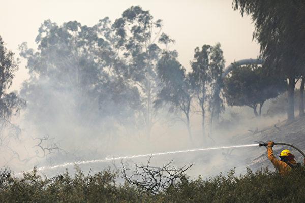 风势减弱 希尔瓦多大火有望获更多围控