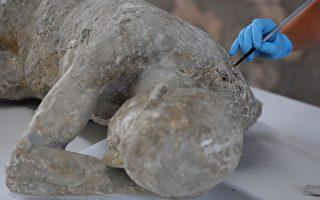 兩千年前火山中遇難 頭骨內分離出完整腦細胞