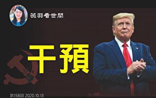 【薇羽看世間】美國大選背後的中共黑手