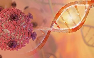 研究發現,癌細胞內藏有特定細菌,不同的癌症伴隨不同的菌種。(Shutter Stock)