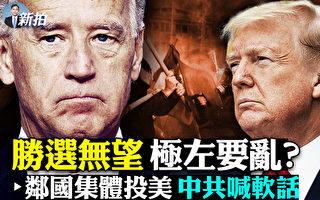 【拍案惊奇】大选日极左骚乱?中共邻国纷投美