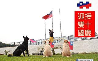 好療癒! 台中搜救犬揮舞國旗參加升旗典禮
