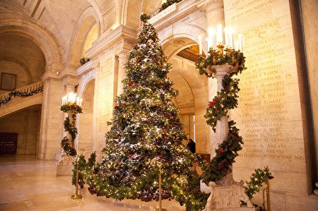 如何安全地将圣诞树运送回家