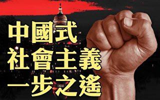 【横河观点】美国离中国式社会主义有多远