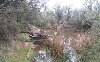 經3童子軍努力 Tenafly自然保護區得以重新開放