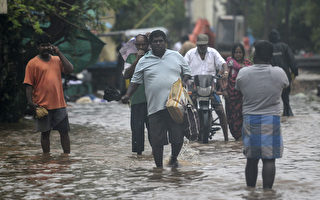 组图:旋风尼瓦尔侵袭印度 数十万人撤离
