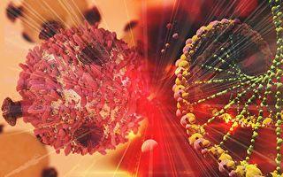 地球上最小动物基因组揭秘