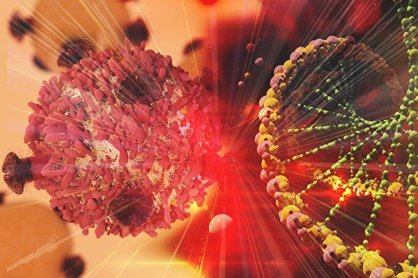 地球上最小動物基因組揭祕