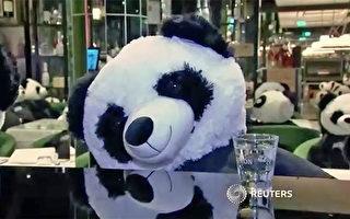 不滿關門政策 德餐館老闆請大熊貓入座抗議