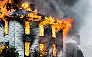 大火中救4人 俄羅斯懷孕母狗自己卻被燒傷