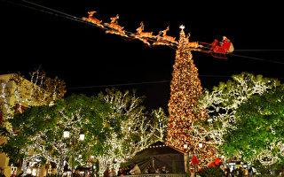 節日觀燈 聖誕彩燈點亮聖地亞哥