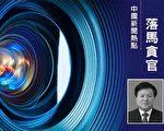 吉林省能源局前局长罗亦非被起诉