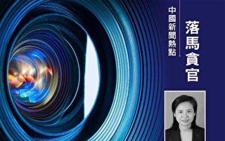 武汉女副市长徐洪兰被调查 事件登热搜榜