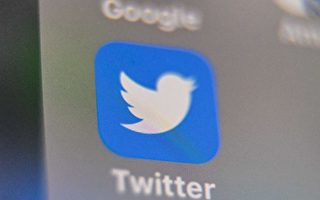 【名家專欄】高科技「惡霸」——推特