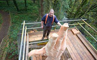风暴中威尔士最高树遭毁 英国男赋予其新生命