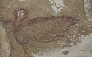 4.55万年前的疣猪 印尼发现最古老动物壁画