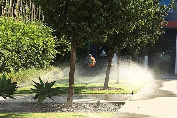 加州封城现恶果 欠10亿水费账单恐促停水潮